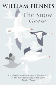 snow geese cover